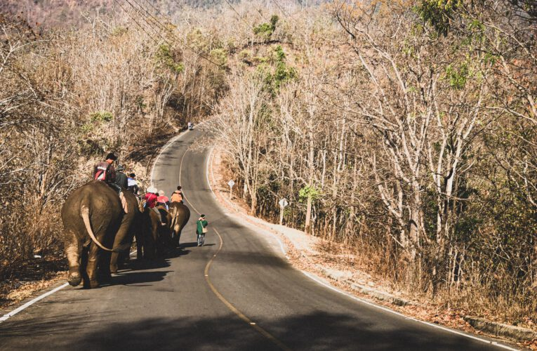 Chiang Mai Welcomes Tourism amidst Covid-19 Pandemic