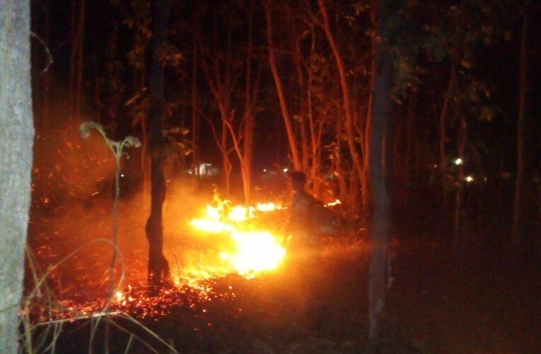 """จังหวัดเชียงใหม่สั่งเข้ม """"ป้องกันไฟป่า.ห้ามเผา..ห้ามเข้าป่า"""" ฝ่าฝืนมีโทษปรับถึงจำคุก"""